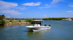 2019 - Twin Vee Boats - OceanCat 260 Pro