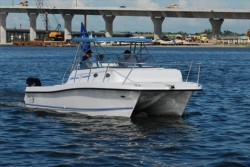 Twin Vee Boats - 29 Express