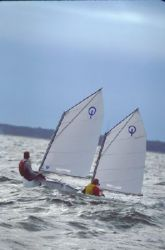 Vanguard Sailboats Optimist Racing Sailboat Boat