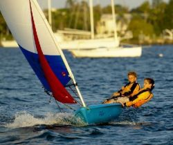 Vanguard Sailboats Pico With Jib Racing Sailboat Boat