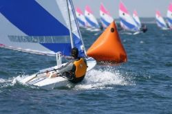Vanguard Sailboats Sunfish Racing Sailboat Boat