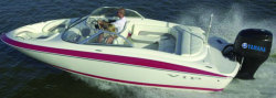 2009 - VIP Boats - 203 BR OB