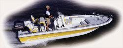 2009 - VIP Boats - 2230 OB Vee Hull