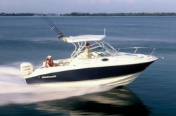 2009 - Wellcraft Boats - 252