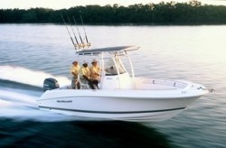 2009 - Wellcraft Boats - 232