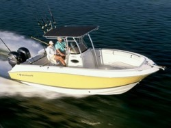 2009 - Wellcraft Boats - 252