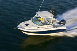 2015 - Wellcraft Boats - 220 Coastal