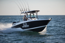 2017 - Wellcraft Boats - 262 Scarab Offshore