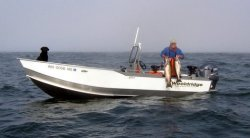 2017 - Wooldridge Boats - 20- Sport Offshore