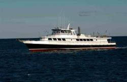 1977 Derecktor Custom Charter Bradenton FL